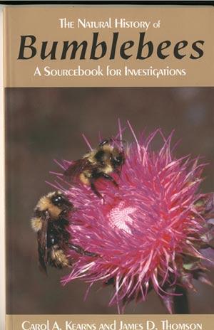 Bumblebeecover