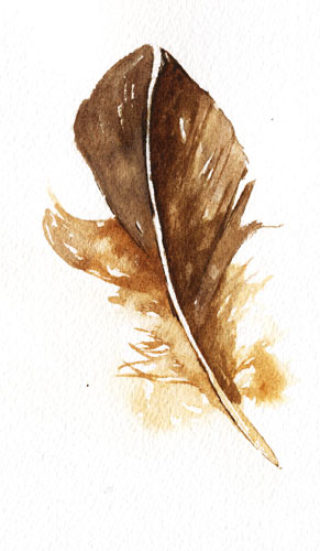 Feather_brown